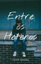 Entre os Heteros (Romance Gay) by vcatbaker