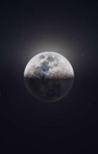 Decayed Hope     (An Abused and Neglected Male Reader X Fem! Creepypasta Fanfic) by FateXJane