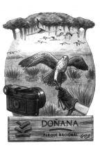 A Doñana by GerarZape