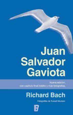 Resumen Juan Salvador Gaviota Frases De Juan Salvador