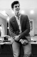 Boss || Shawn Mendes by Hibbaxo
