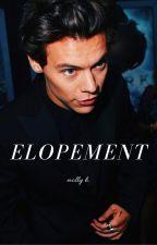 Elopement | h.s.| by mollyannabelleh