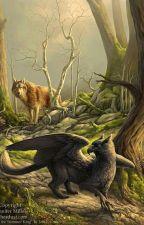 Le loup au 1000 secrets by LnaCoursier