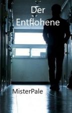 Der Entflohene by MisterPale