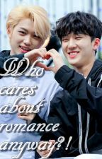 Who cares about Romance anyway?! [ChangLix/completed] by ListentomyMelodia