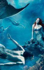 Meeting the Mermaid by Maragleason9090