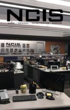 NCIS||Imagines & Preferences by Ask-Yo-Girl-About-Me