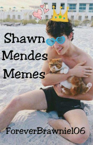 Shawn Mendes Memes