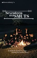 Seventeen BxB Smut Compilation by missxxtery