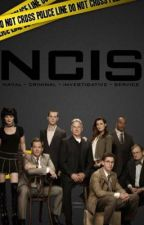 NCIS Preferences by ofherwintermelodies