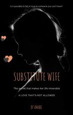 SUBSTITUTE WIFE by story4u02