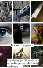 hot and dangerous (larry stylinson fanfic) by paigeberry28