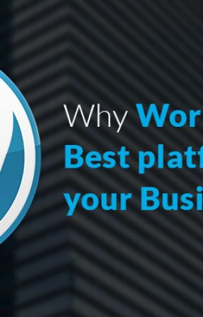 Why you Should Hire Wordpress Developer for your Company by elliewindler