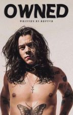owned   ✧   one direction by reptvr