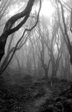 El Bosque Oscuro (Primera temporada) by AlisMasters