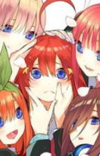 The 'Best' Study Group Ever Made! The Quintessential Quintuplets x Male Reader by TheSpectre21