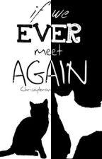 If We Ever Meet Again (EDITING) by Chrisayleran