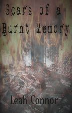 Scars of a Burnt Memory by reininginthefire