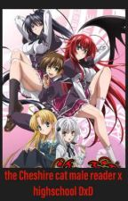The Cheshire cat (Op male reader x highschool DXD) by Cheshire_cat_47