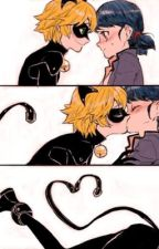 Miraculous Ladybug and Chat noir Picture  by kuraxmasha