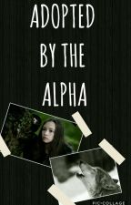Adopted By The Alpha (COMPLETE) by Dvsney