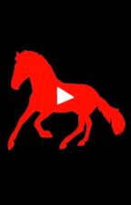 YouTubers as Horses // A YouTuber FF (On Hold) by rileyabonds