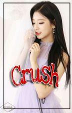 Crush | • Jjk+Jy by Oggy_owlie