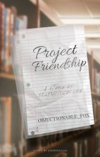 Project Friendship by Objectionable_Fox