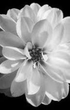 Heartbroken Poems by teenshakinq