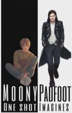 Moony & Padfoot One Shot Imagines by seannex