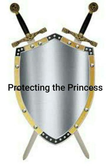 Protecting the princess (Miraculous Ladybug fan fic)