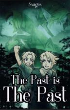 The Past Is The Past - A Zelink Au by Svages