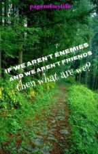 If we aren't enemies and we aren't friends then what are we? by pagesofmylife