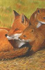 My Foxy Famiy by kaylachloe