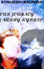 Our Journey (Narry Hybrid) by fasterxnarry