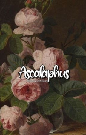 Ascalaphus | Tk by bitchespark