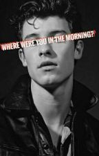 Where were you in the morning?(Shawn Mendes-Magyar) by KatelynArchebat