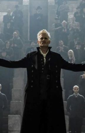 Book I - The Drew Grindelwald Series by thewholocklover
