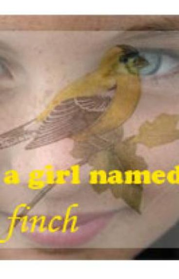 A Girl Named Finch-currently being rewritten
