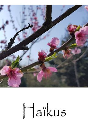 Haïkus au gré des vents by Lymirin