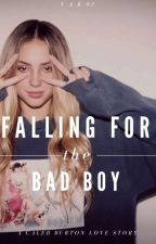 Falling For The Bad Boy by v_a_k_03