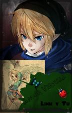 Amor virtual ~Link y Tu~  by TamiTheHedgehog