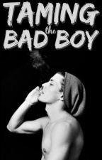Taming the Bad Boy by KayxMic