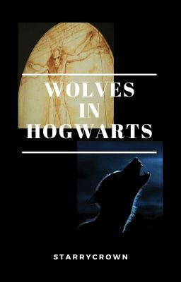 Wolves In Hogwarts Goblet Of Fire Wattpad It is located in the northernmost regions of norway or sweden. wattpad