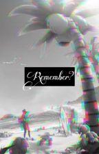 Remember? -A Pokémon Story- by popo1065