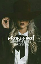 When We Meet // shawn mendes by mercurymaroon
