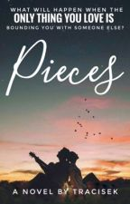 Pieces  by tracisek