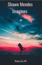 Shawn Mendes Imagine  by Disney_fan_101