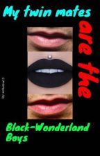 My twin mates are the Black-Wonderland Boys by Evaporare