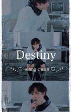Destiny || Bang Chan by Straychanz